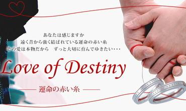 感動の誕生日プレゼント・赤い糸が入ったペアアクセサリー