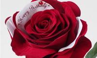 サプライズの誕生日プレゼント・メッセージフラワー
