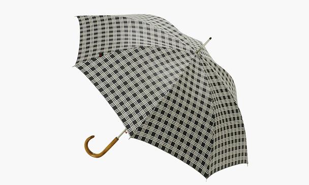 クニルプスの傘・Long AC
